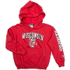 Champion Youth Wisconsin Badgers Hooded Sweatshirt (Red)