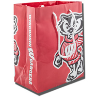 Ad Madison Bucky Badger Gift Bag