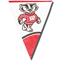 Stockdale Bucky Badger Plastic Flag Banner