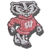 Neil Enterprises, Inc. Bucky Badger Bling Magnet