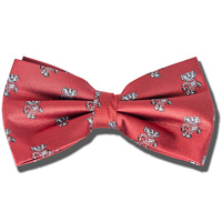 Jardine Youth Bucky Badger Bow Tie (Red)