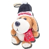 Boelter Brands Wisconsin Badgers Plush Dog Ornament