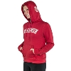 JanSport Women's Wisconsin Hooded Sweatshirt (Red) * thumbnail