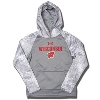 Under Armour Youth Wisconsin Novelty Fleece Hoodie (Gray) *