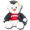 Mascot Factory Wisconsin Graduation Bear (Louie)