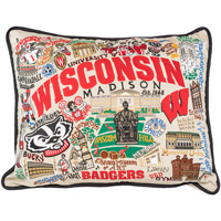Catstudio Wisconsin Badgers Pillow