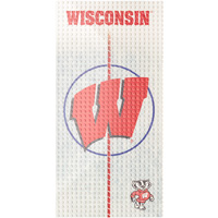 OYO Sports Wisconsin Badgers Hockey Rink Display Plate
