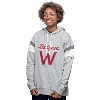 Under Armour Women's Iconic Wisconsin Hoodie (Grey)