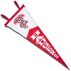 Collegiate Pacific UW Badgers Pennant