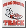 Potter Decals Die-Cut Wisconsin Track Decal *