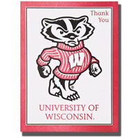 Overly Bucky Thank You Cards