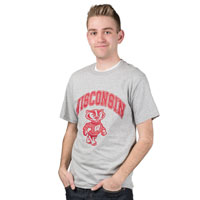 Champion One Color Arch WI and Bucky T-Shirt (Gray)