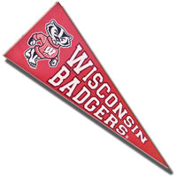 Neil Enterprises, Inc. Wisconsin Badger Pennant Magnet