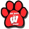 All Star Dogs Car Magnet