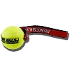 Spirit Products Wisconsin Badgers Tennis Ball Dog Toy