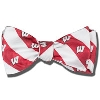 Jardine Wisconsin Badgers Bow Tie (Red/White)