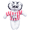 Cover Image for Mascot Factory Plush Bucky Badger Magnet