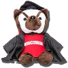 Image for Mascot Factory Graduation Bucky Badger