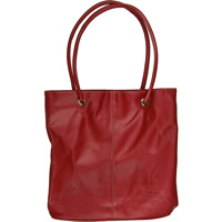 Cover Image For Carolina Sewn Products Wisconsin Tote Bag (Red)