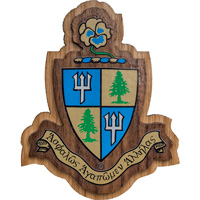 Cover Image For Craftique Mfg. Double Wooden Crest (Delta Delta Delta)
