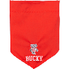Image for All Star Dogs Bucky Pet Bandana (Red)