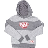 Image for Under Armour Youth Striped Bucky Badger Sweatshirt (Grey)*