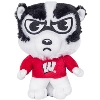 Cover Image for Mascot Factory Musical Bucky Badger Plush