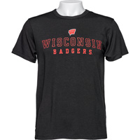Image For Alta Gracia Wisconsin Badgers T-Shirt (Black) *