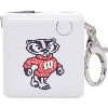 Image for Fanatic Group Bucky Badger Key Chain Charger