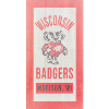 Image for Legacy Wisconsin Badgers Wood Plank Sign 11x20 (Wood)