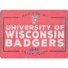 Cover Image for CDI Corp 3 Inch Bucky Badger Magnet