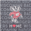 Cover Image for Legacy Wisconsin Shield Coaster