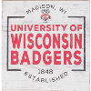 Image for Legacy Wisconsin Badgers Small Square Block