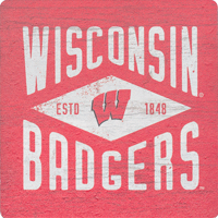 Cover Image For Legacy Wisconsin Badgers Diamond Wood Magnet