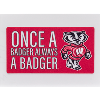 Cover Image for Dizzlers Badger Alumni Sticker Small