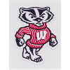 Cover Image for Dizzlers Once A Badger Tag Sticker Small