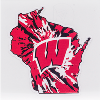 Image for Dizzlers Tie Dye Wisconsin State Sticker Large