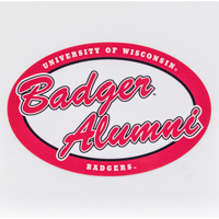 Image For Dizzlers Badger Alumni Sticker Large
