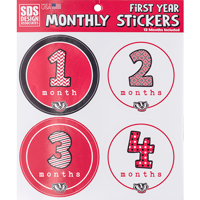 Image For Dizzlers First Year Monthly Wisconsin Badger Stickers