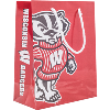 Cover Image for Mayflower Wisconsin Badger 18 Inch Foil Balloon