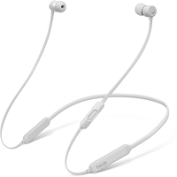 Image For BeatsX Earphones - Satin Silver