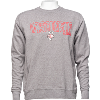 Image for Alta Garcia Wisconsin Crewneck (Gray)