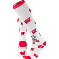 Image For TCK Comfort Wisconsin Motion W Socks (White)