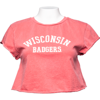 Cover Image For Alta Gracia Wisconsin Badgers Crop T-Shirt (Red)