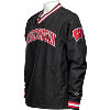Cover Image for Champion Wisconsin Pullover Windshirt (Black) *