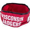 Cover Image for All Star Dogs Wisconsin Badgers Collapsible Dog Bowl