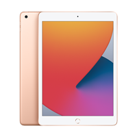 "Cover Image For Apple iPad 10.2"" 8th-Gen 128GB; Wi-Fi (Gold)"