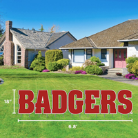 Image For CDI Badgers Lawn Sign