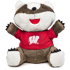 "Cover Image for MCM Group Inc. Bucky Badger (6"")"