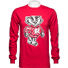 Cover Image for Champion Wisconsin Badgers Crew Neck Sweatshirt (Red)